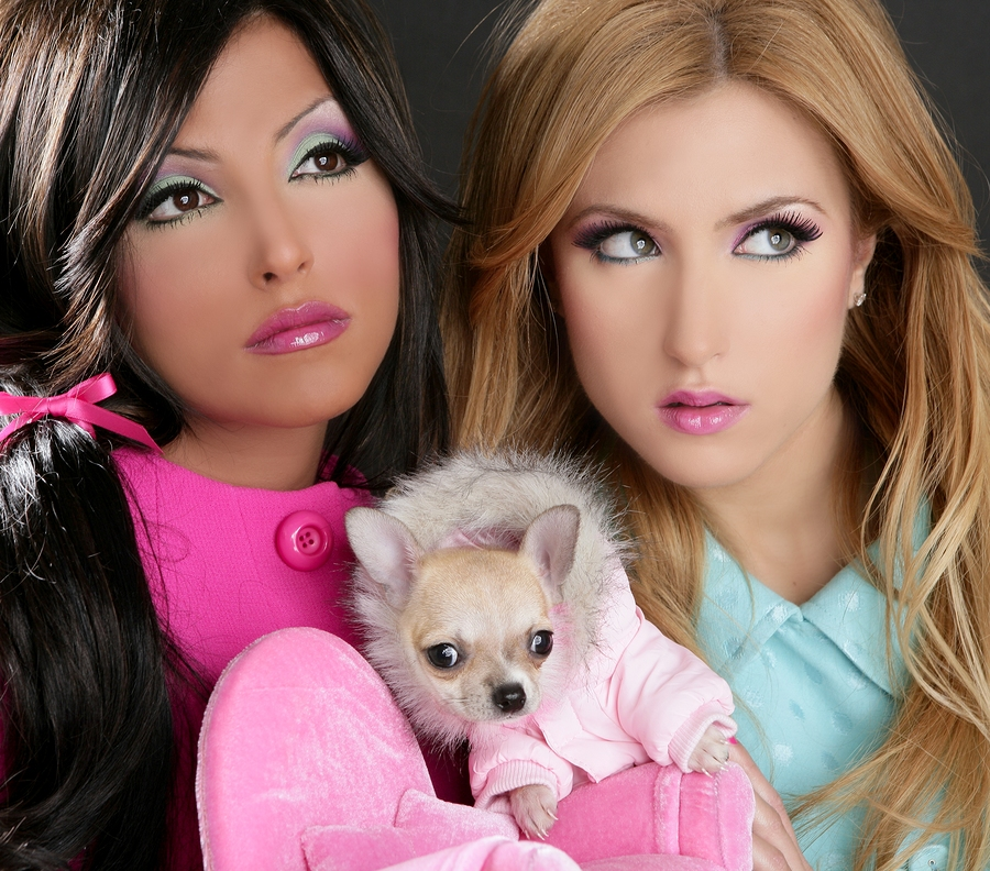 Fashion Doll Women With Chihuahua Dog Pink 1980S